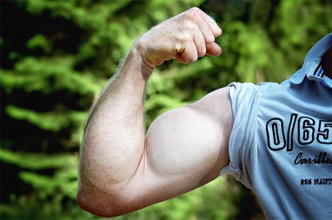 braccio muscolo