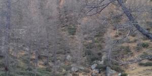 Lago_delle_Streghe_normale_1_nov_2020.jpg